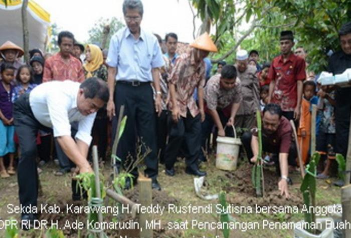 Sekda Kab Karawang Menghadiri Pencanangan Penanaman Tanaman Buah Naga